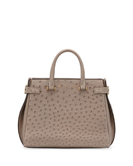 VBH Boulevard Ostrich Medium Tote Bag, Light Brown