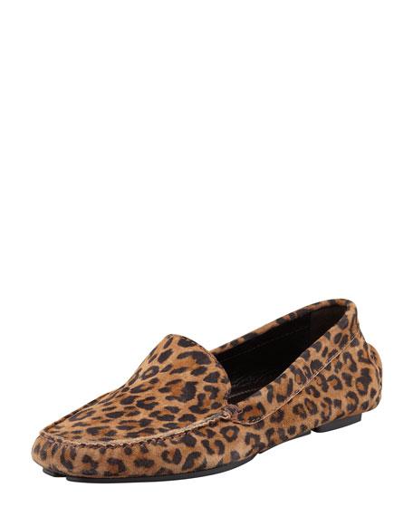 Mocc Leopard-Print Suede Driver