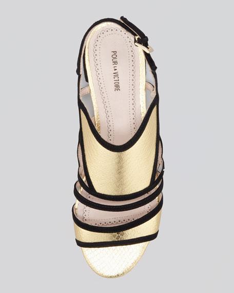 Estele Snake/Suede Sandal, Black/Gold