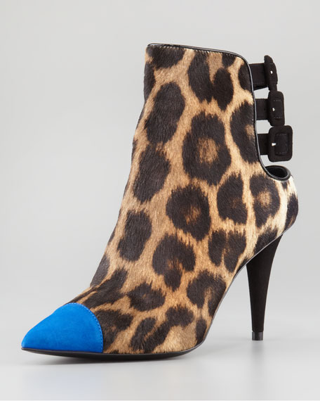 Calf Hair Cap-Toe 3-Strap Bootie, Leopard/Blue