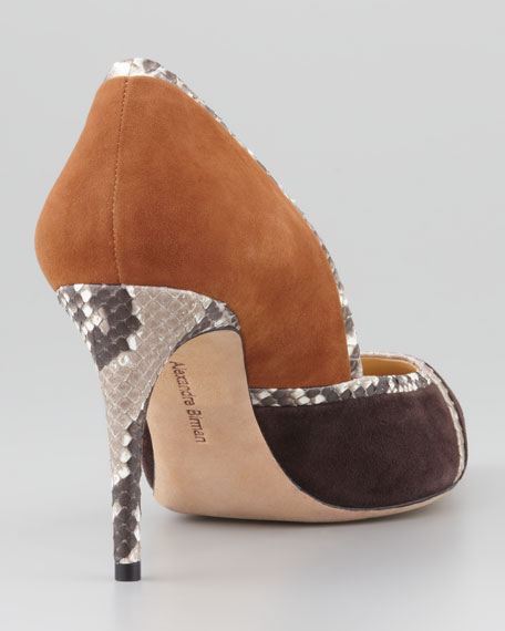 Suede Wiindowpane Pointy Pump