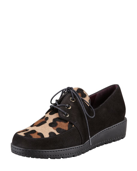Darby Leopard Print-Front Lace-Up