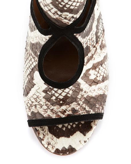 Caged Peekaboo Snake Sandal