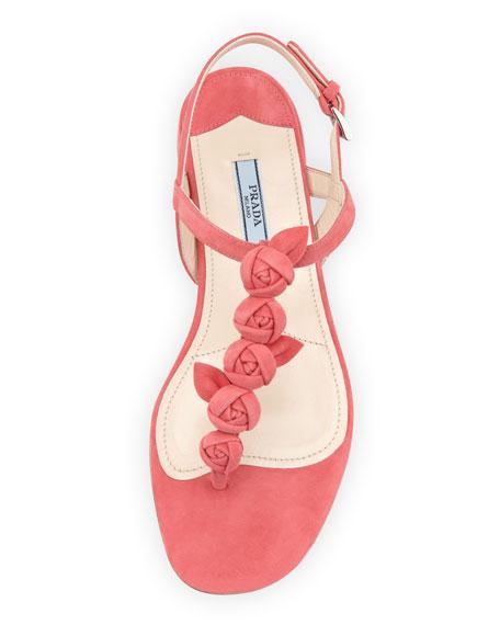 Suede Rose Thong Sandal, Pink