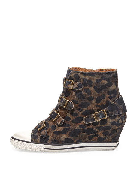 Eagle Leopard-Print Wedge Sneaker