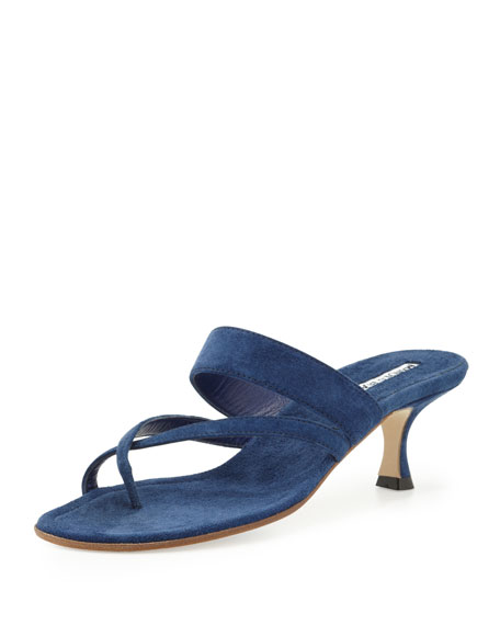 Susa Suede Low-Heel Thong Sandal, Blue