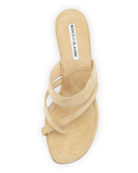 Susa Suede Low-Heel Thong Sandal, Beige