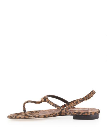 Valig Leopard-Print Suede Thong Sandal