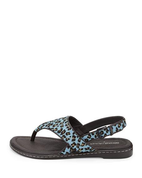 Gal Leopard-Print Calf Hair Thong Sandal, Blue