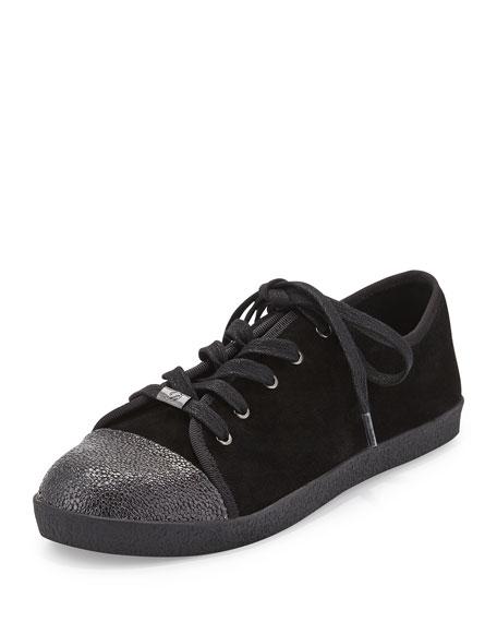 Delman Magie Low-Top Suede Sneaker, Black