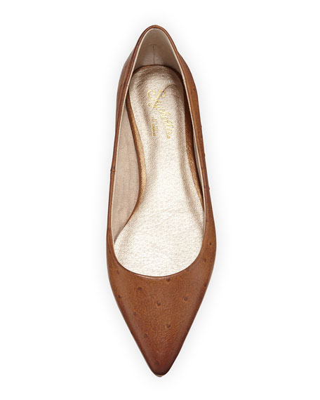 Well Known Ostrich-Embossed Pointy-Toe Flat, Whiskey
