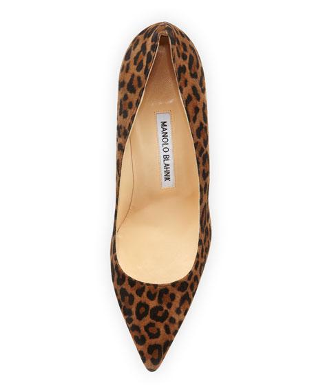 BB Leopard-Print Suede Pointy Pump