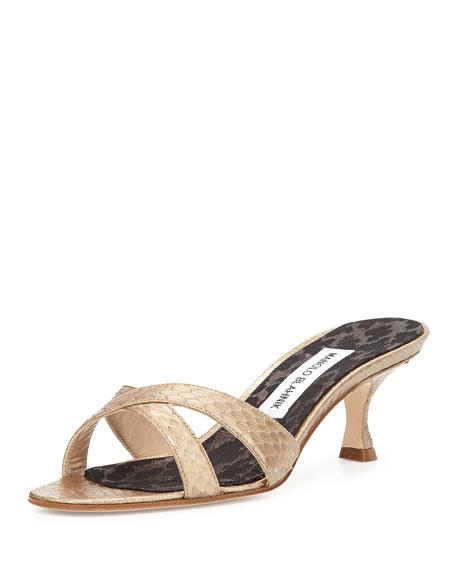 Manolo Blahnik Callamu Watersnake Slide Sandal, Bronze