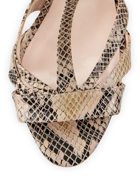 Desiree Snake-Print T-Strap Sandal, Sable