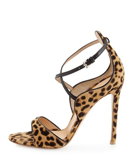 Animal-Print Calf Hair Sandal, Leopard/Black