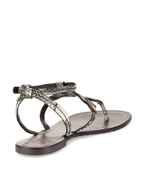 709eda1b5f6ebc ... new arrivals tory burch phoebe snake embossed flat sandal brown neiman  marcus 39a9c 6483d ...