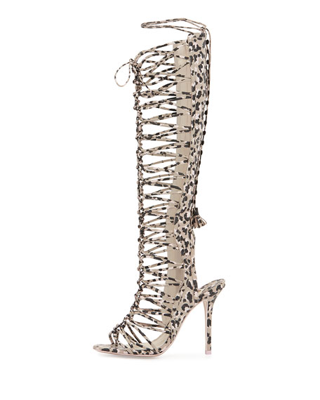 Clementine Knee-High Gladiator Sandal, Camo/Nude