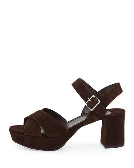 Crisscross Suede Platform Sandal, Brown (Moro)