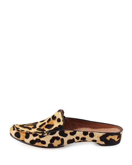 Donald J Pliner Breva Leopard-Print Calf-Hair Mule, Black ...