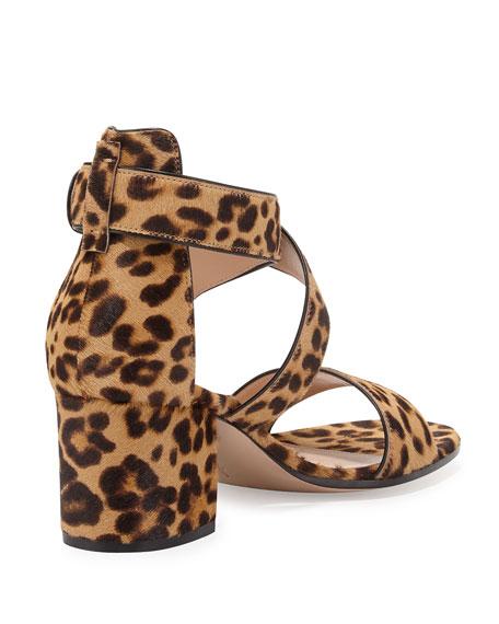Leopard-Print Calf-Hair Crisscross Sandal, Leopard/Black