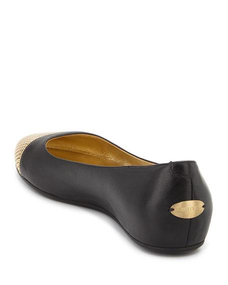 Waine Metal Mesh-Toe Ballerina Flat, Black/Gold
