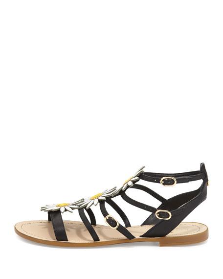 collin daisy t-strap sandal, black