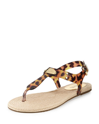 Hazel Flat Jelly Thong Sandal, Tortoise