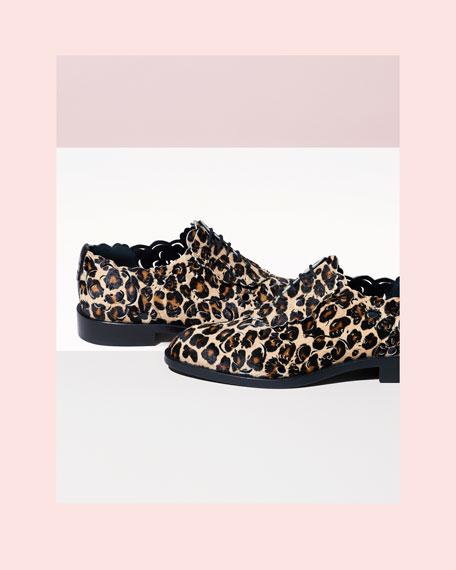 Laser-Cut Lace-Up Derby Oxford, Leopard