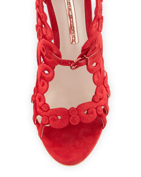 Albany Embroidered Pin-Heel Suede Sandal