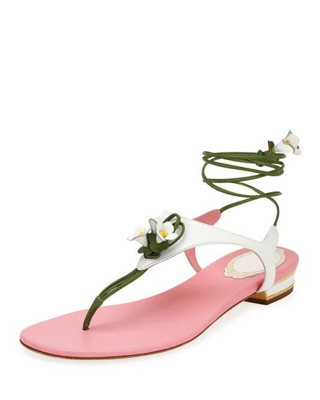 Rene Caovilla Flower-Tie Flat Thong Sandal