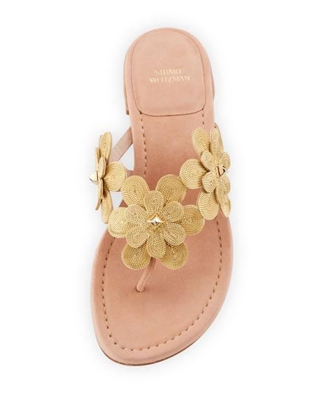 Livewire Floral Suede Thong Sandal