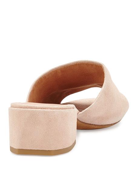 Rachelle 2 Suede Block-Heel Mule Sandal