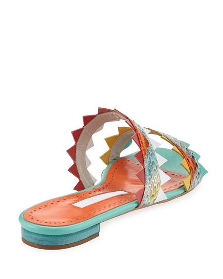 Arpege Sharkbite Flat Slide Sandal