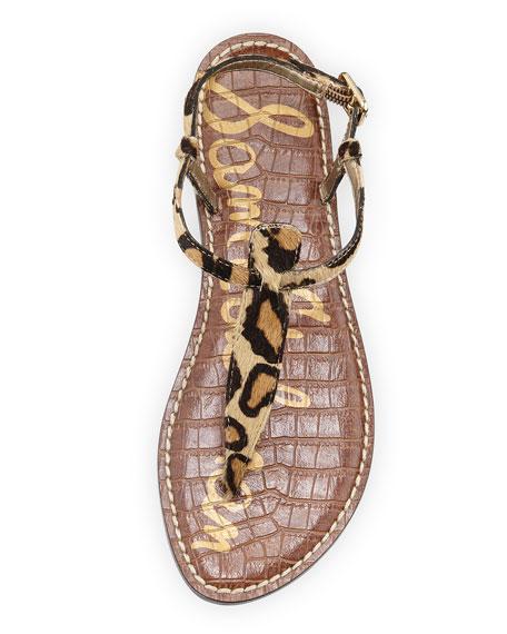 Gigi Leopard-Print Calf-Hair Thong Sandal