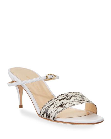 Jennifer Chamandi Andrea Snake/Leather Mule Sandals