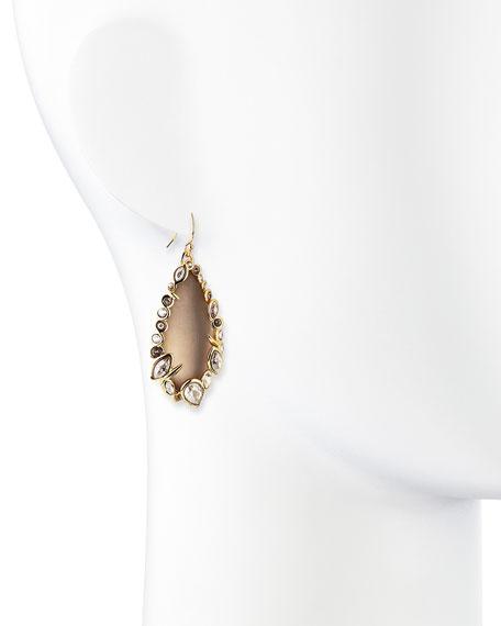 Gray Lucite Drop Earrings
