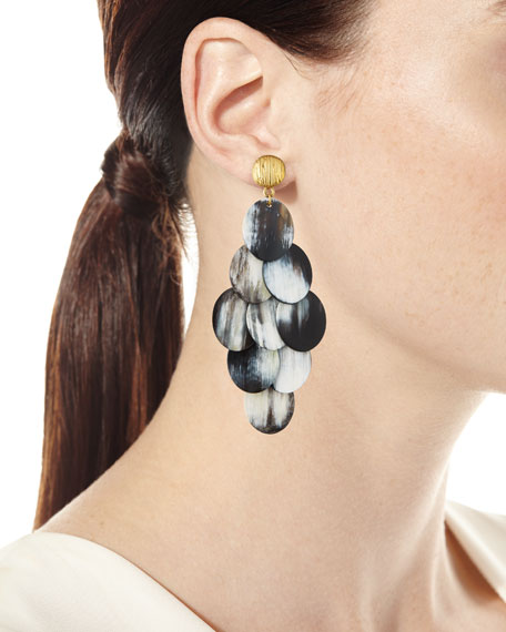 Mixed Horn Cluster Drop Earrings