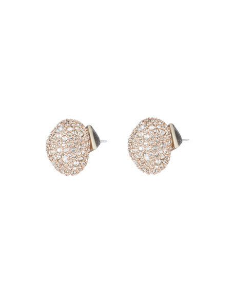 Crystal Encrusted Pod Post Earrings