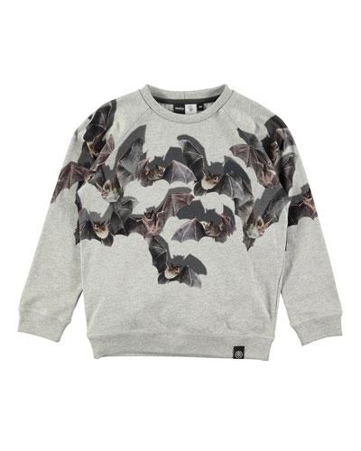 Reuben Shadow Bats Raglan Sweatshirt, Gray, Size 4-10