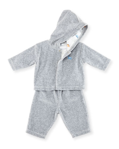 Jurassic Journey Velour Track Suit, Gray, Size 3-18 Months