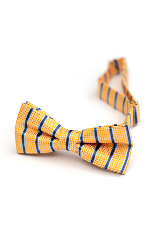 Appaman Boy's Check & Stripes Bow Tie