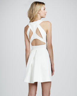 Robert Rodriguez Sleeveless Cutout-Back Dress