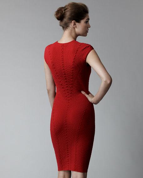 Patterned Intarsia Knit Sheath Dress