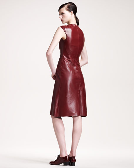 Seamed A-Line Leather Dress