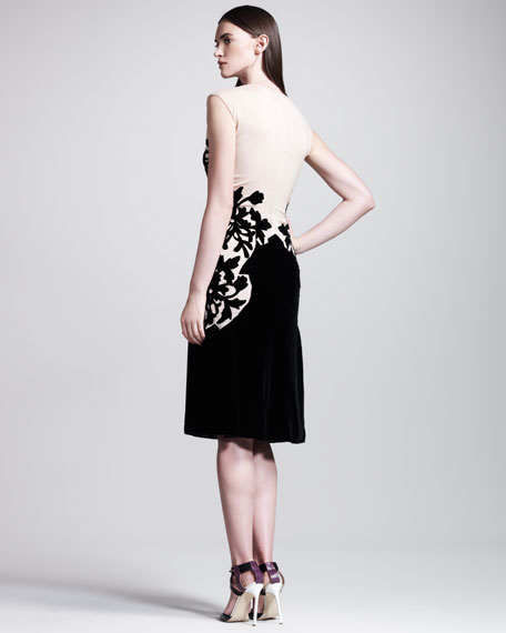 Devore/Chiffon Dress