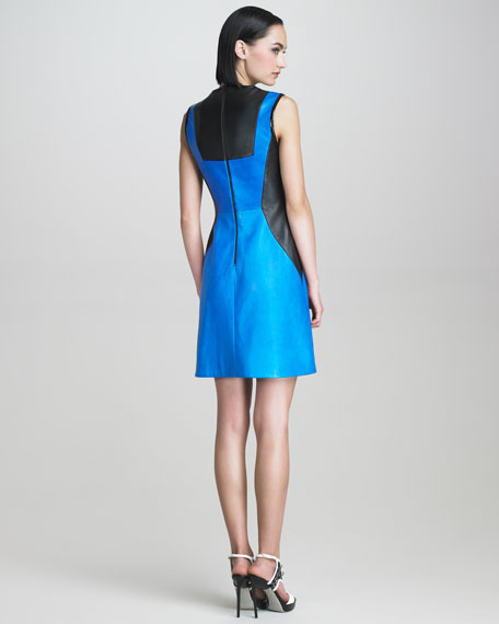 Sleeveless Leather Colorblock Dress
