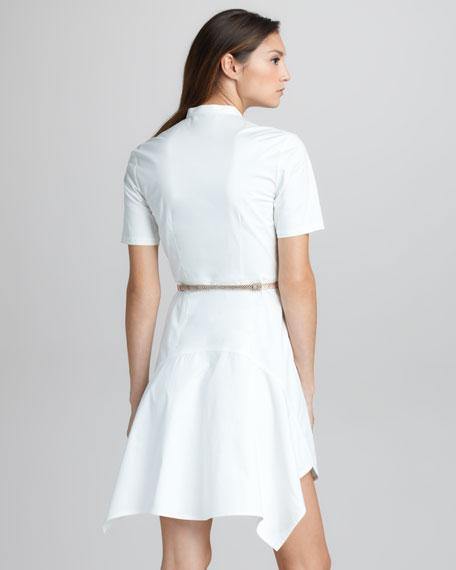 Flirt Pintucked Cotton Dress