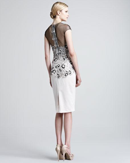Illusion-Top Lace Dress