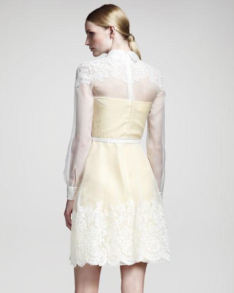 Lace-Trim Organza Dress