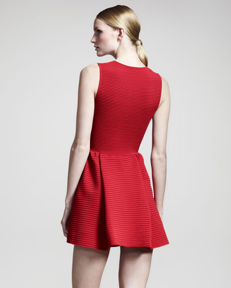 Ribbed Fit-and-Flare Dress